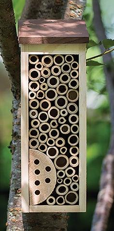 Shop Birds + Bees