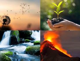 Viva Terra Blog - The Four Elements