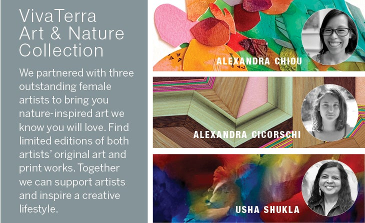 Image of Collage of artist faces and color backgrounds featured in the VivaTerra Art & Nature Collection