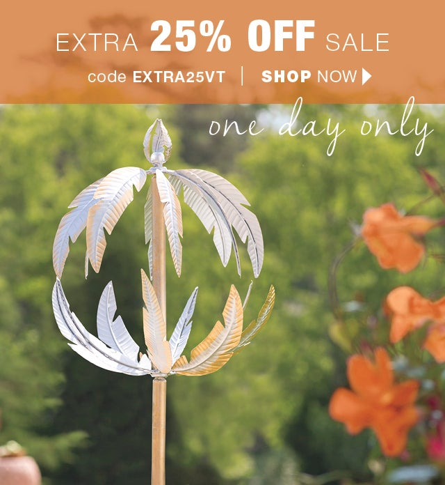 Extra 25% OFF all SALE items.  Shop now Code EXTRA25VT