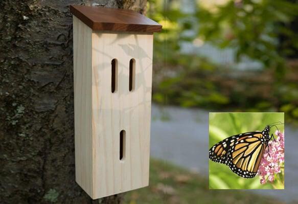 5e9de8c1a birdhouse butterfly house