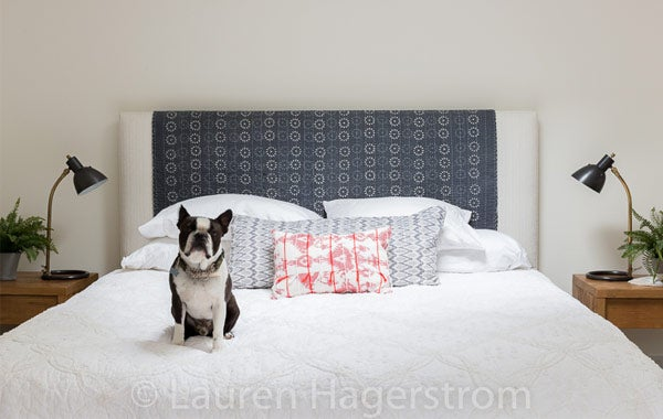 Lauren Hagerstrom Bed with Dog